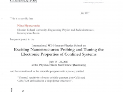 """International WE-Heraceus-Physics School on """"Exciting Nanostructures: Probing and Tuning the Electronic Properties of Confined Systems"""""""