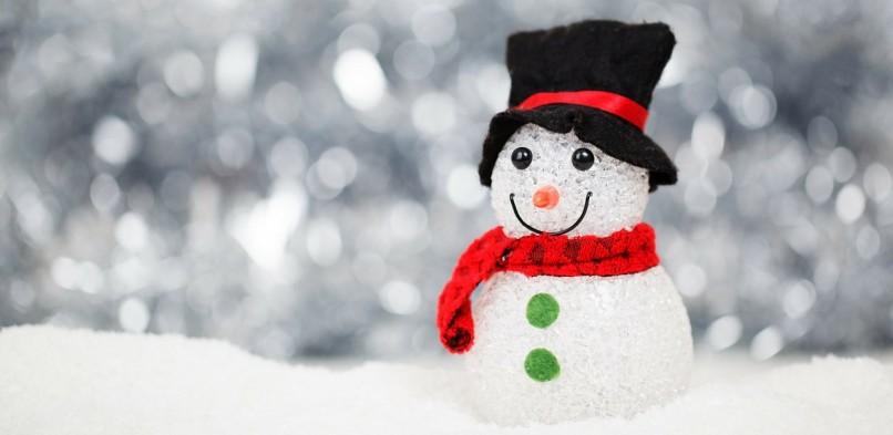 Новогодние подарки и праздничный концерт для детей