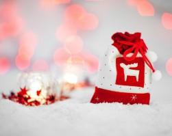 Новогодние мероприятия в СФУ